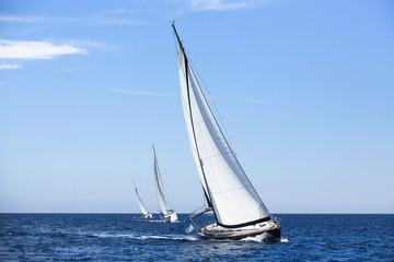 Wall Mural - Boats in sailing regatta. Luxury yachts.