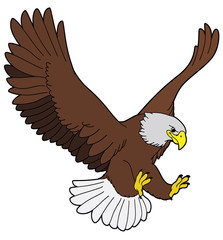 Cartoon animal - eagle - flat coloring style