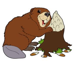 Cartoon animal - beaver - flat coloring style