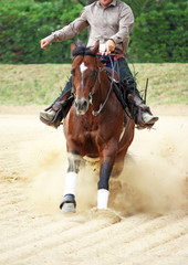 man riding a horse in the corral