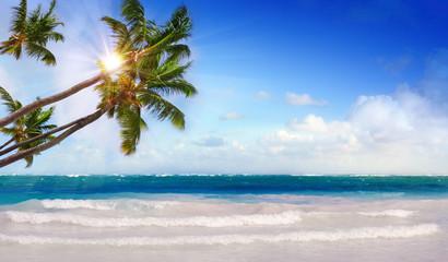 Caribbean beach and sun shining.