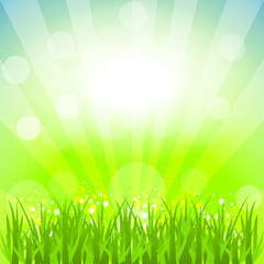 Abstract vector background with nature theme