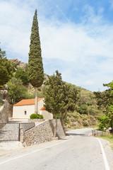 Kreta - Griechenland - Zypresse bei Prevelhi