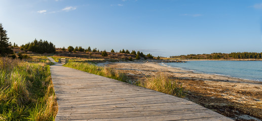 Panorama of wood path at the beach