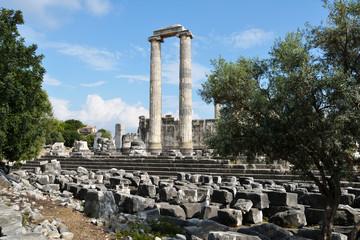 Temple of Apollo in Didim, Turkey