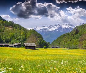 Fototapete - Alpine meadows near the village of Bondo