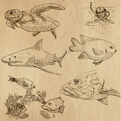 Underwater, Sea Life (vector set no.1) - hand drawn