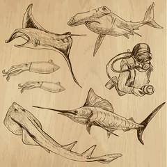 Underwater, Sea Life (vector set no.3) - hand drawn