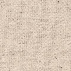 Light brown canvas texture. EPS 10