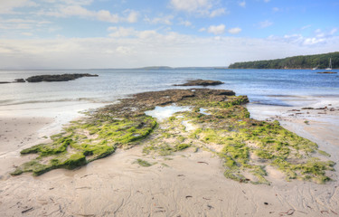 Moss covered rocks and rock pools