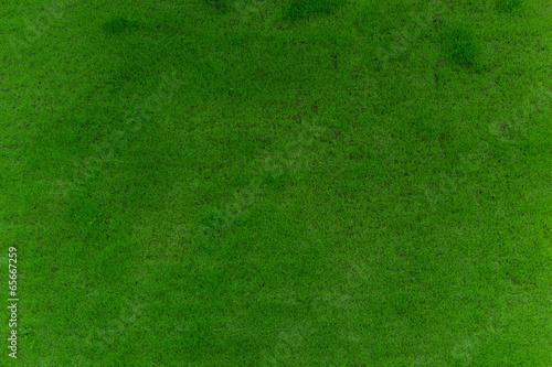 fleckiger rasen von oben stockfotos und lizenzfreie bilder auf bild 65667259. Black Bedroom Furniture Sets. Home Design Ideas