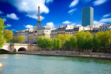 Wall Mural - Berges de la Seine à Paris