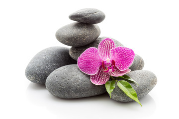 Fototapete - Spa stones