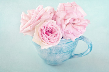 Beautiful fresh pink roses in a cup on a blue background