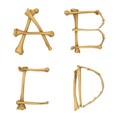 Skeleton alphabet A-D