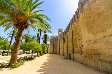 Alcazar de los Reyes Cristianos en het landschap van Cordoba, Sp
