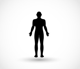 Human male body vector