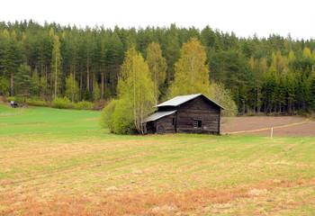 An abandoned farmhouse on a farm in Finland