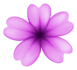 A lavender flower