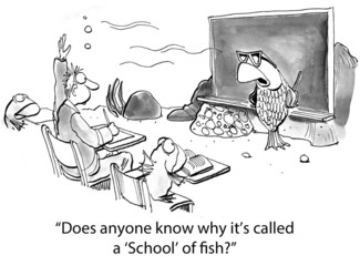 """""""Does anyone know why it's called a 'School' of fish?"""""""