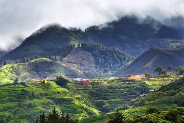 Gran Canaria rural landscape