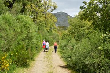 tres mujeres caminando por un camino en el monte