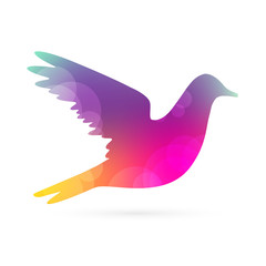 Color bird silhouette, abstract vector illustration
