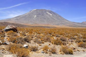 Barren Volcanic Landscape of Atacama Desert