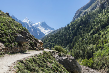 The Gangotri valley in the Indian Himalayas.