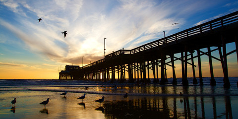 Newport Beach California Pier at Sunset in the Golden Silhouette Wall mural