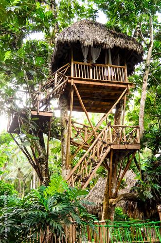 traumhaus baumhaus im tropischen regenwald. Black Bedroom Furniture Sets. Home Design Ideas