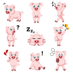 Cute pig cartoon icons