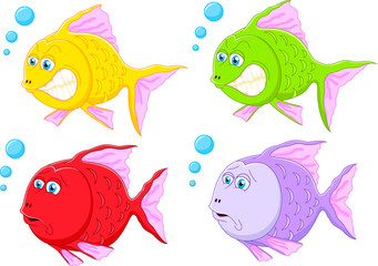 Fish cartoon collection