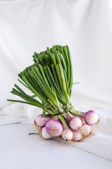 Onions on white table background and tissue