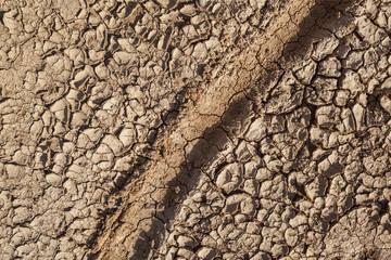 Reifenspur im trocknen Boden