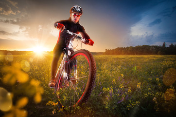 Fototapete - Sport bike, cycling in the beautiful meadow