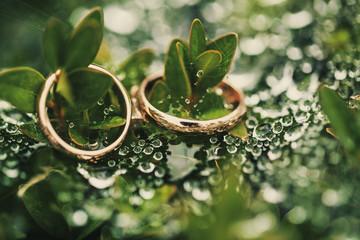 Wedding-ring on green