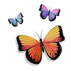 Set of multicolored butterflies