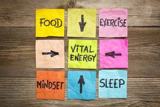 vital energy concept