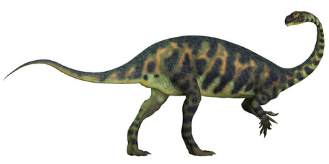 Massospondylus Profile