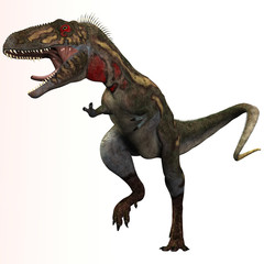 Nanotyrannus Profile