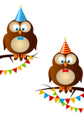 Birthday owls on white background