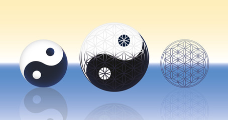 Flower of Life Yin Yang Spheres