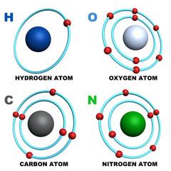 hydrogen oxygen carbon nitrogen atom