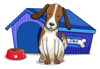A dog outside the blue house