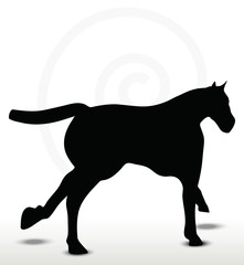 horse silhouette in running position