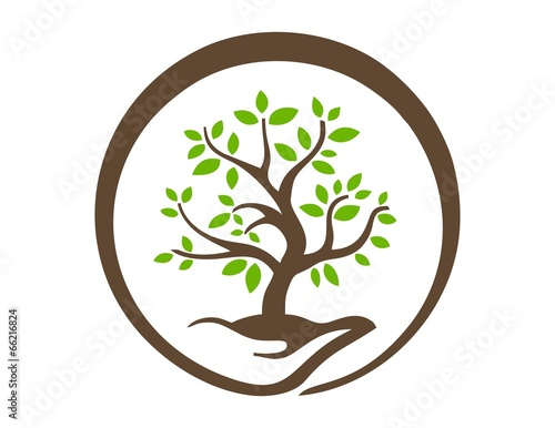 tree of life logo royalty free best clipart gallery u2022 rh kanuka co Celtic Tree of Life Logo tree of life logo design