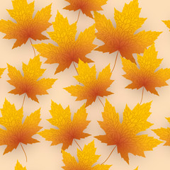 Maple leave fall vector background
