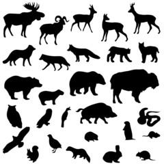 Wild animals vector set silhouettes