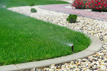 Wall Murals Green Sprinklers watering grass